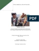 Guarani - Ana Freitas - Relatorio Mato Preto - 2004.PDF