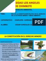 Rol de La Constitucion en La Actividad Minera