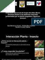 presentacionafidos200922-9-9-091025130643-phpapp01