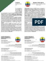 Boletin Ccp 2011-2013