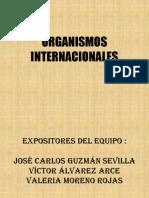 EXPOSICION ORGANISMOS INTERNACIONALES (1)