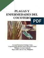 Plaga y Enfermedades Del Cocotero