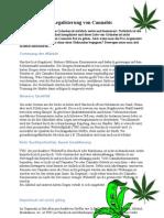 Gründe für die Legalisierung von Cannabis