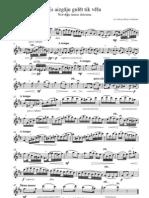 norwegian folk song, flute solo