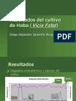 Resultados Del Cultivo de Haba (Vicia Faba