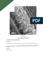 Polime và vật liệu polime