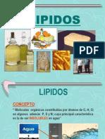 11.- LIPIDOS