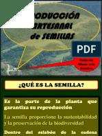 Produccion Artesanal de Semillas