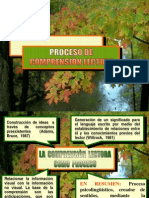 comprensinlectoraytiposdelectura-090717192426-phpapp02