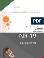 NR 19 - JEH NOVELI Nº19