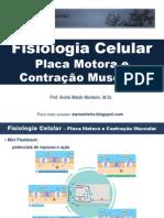 Fisiologia Celular - placa motora e contração muscular