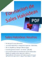 Formacion de Sales Haloideas