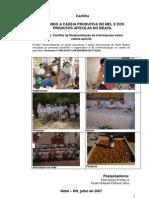 Cartilha Olhando a Cadeia Produtiva Do Mel e Dos Produtos Apicolas No Brasil
