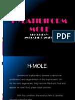 H-MOLE