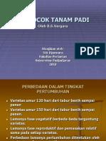 BERCOCOK TANAM PADI (Biji Bijian ) May Siti Djasmara