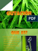 gutacion