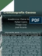 CromatografiaGasosa
