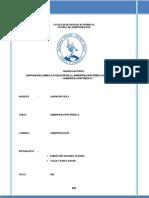 MONOGRAFÍA SOBRE LA EVOLUCIÓN DE LA ADMINISTRACIÓN PÚBLICA EN EL PERÚ Y EL MUNDO - ADMINISTRACIÓN PÚBLICA