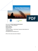 2008 11 05 Nuclear Fleet Strategies Final Notes Version
