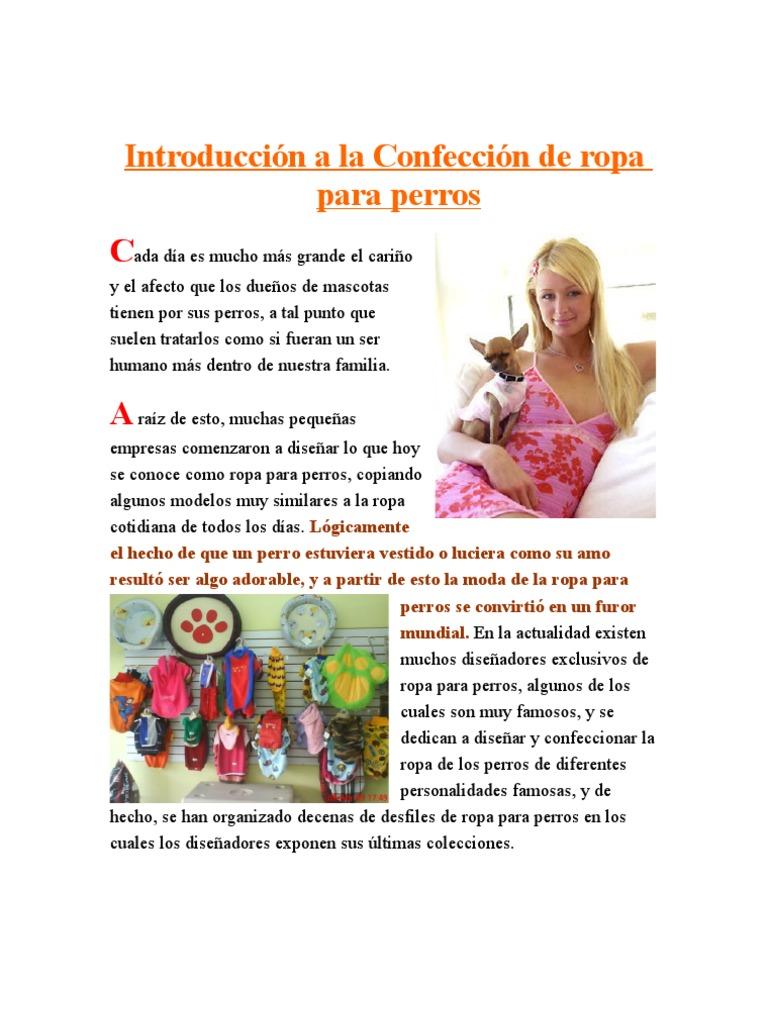 1) Introduccion a La Ropa Para Perros