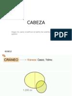 Cabeza Coscarelli