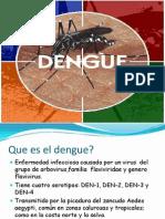 Dengue Exposicion