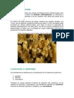 materialdidactico01-modulo4