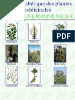Guide Des Plantes Medicinales 2