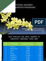 Potensi Anggrek Tangerang