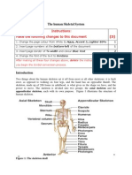 The Human Skeletal System(1)