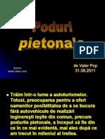 Poduri Pietonale 2.8.FL
