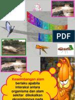 Pemeliharaan & Pemuliharaan Alam Sekitar