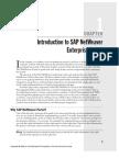 Intro SapNetweaver