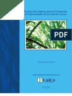 Escalas Descriptivas para la Evaluación de Enfermedades de la Caña de Azúcar