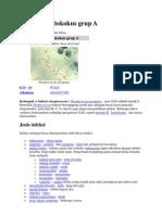 Infeksi Streptokokus Grup A