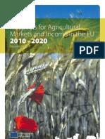 Analiza Piata Agricola Pana in 2020