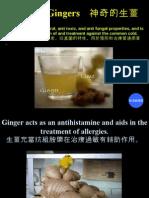 Amazing Gingers - 神奇的生薑