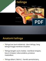 Anatomi Telinga Nis