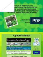Research Experiences in the project Characterization of aqueous and methanolic extracts of Costus sp, Tapeinochilus ananassae, Syzygium jambos and Tradescantia spathaceae. Isamar Martínez del valle. Mentor(a)