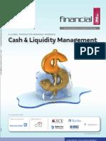 Cash and Liquidity Management