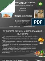 Hongos Industriales