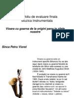 Portofoliu+de+Evaluare+Finala