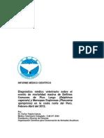 Orca Reporte 06 Pe 2012