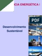 DesenvolvimentoSustentavel-2012
