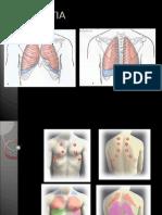 Sindroame Respirator - Traheal, Bronsitic