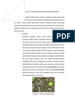 Tekstur Khusus Pada Batuan Beku Dan Petrogenesanya