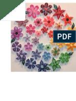 Diverse Forme de Flori