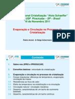4 Evaporacao e Circulacao No Processo de Cristalizacao Pedro Avram IPRO