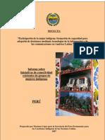 Informe sobre Iniciativas de conectividad existentes de grupos de mujeres indígenas (Perú)