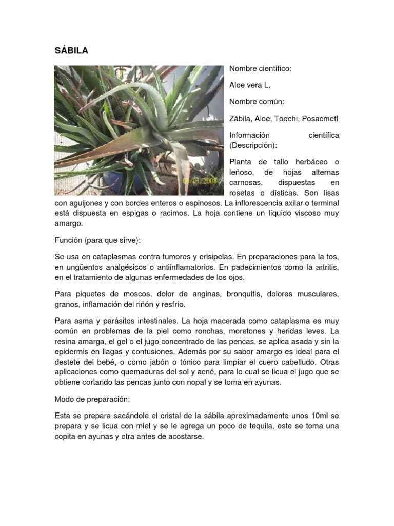 acido urico dolor hombro acido urico remedios naturales para bajarlo que es acido urico pdf